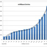 miRBase Growth Turning Exponential