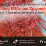 Conference: Non-Coding RNAs and Epigenetics in Cancer