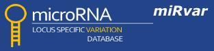 miRvar Database for Genomic Variations in microRNAs logo