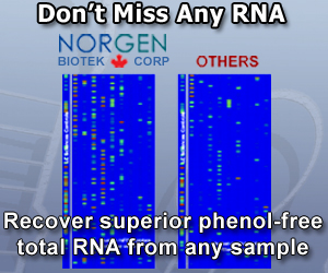 Norgen - the miRNA sample experts