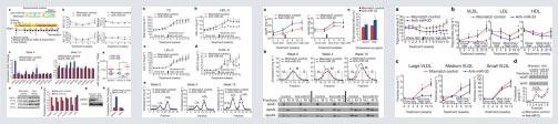 Pre-clinical Data on miR-133