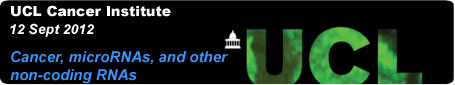 Banner for 3rd International Symposium on Cancer, microRNAs, and other non-coding RNAs