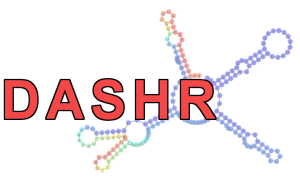 DASHR: database of small human noncoding RNAs