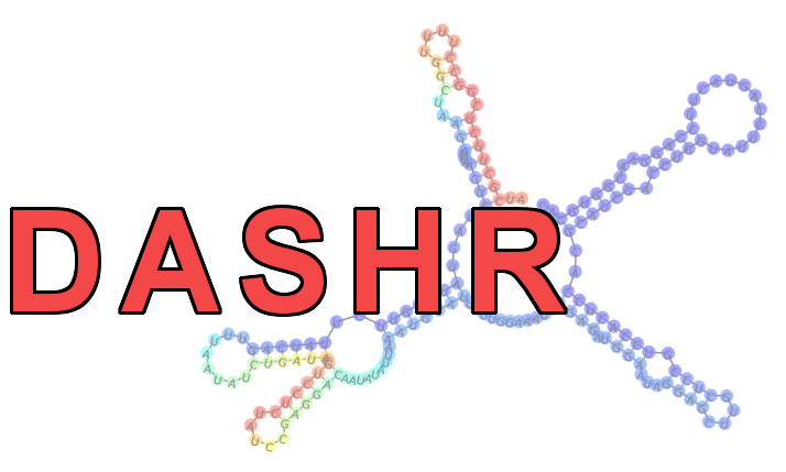 DASHR: database of small human noncoding RNAs
