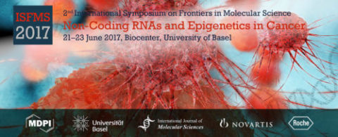 2nd International Symposium on Frontiers in Molecular Science Non-Coding RNAs and Epigenetics in Cancer logo